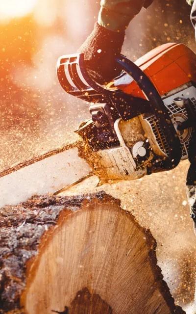 wood-tools-img-saw-2-opt